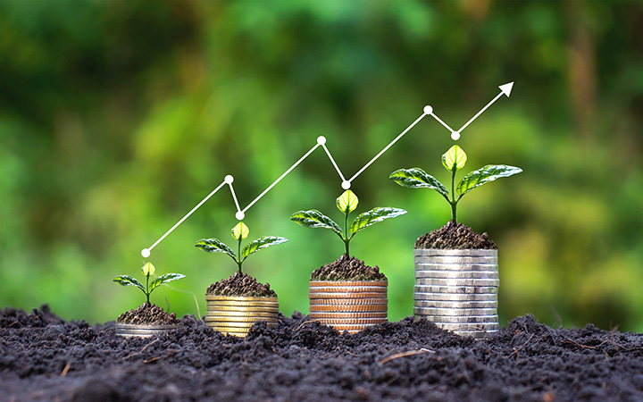 Monedas - crecimiento - green marketing