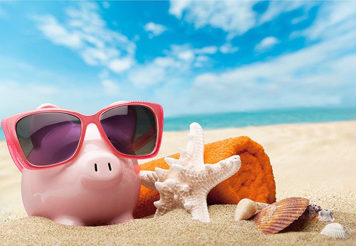 Alancía cerdito tomando sol en la playa